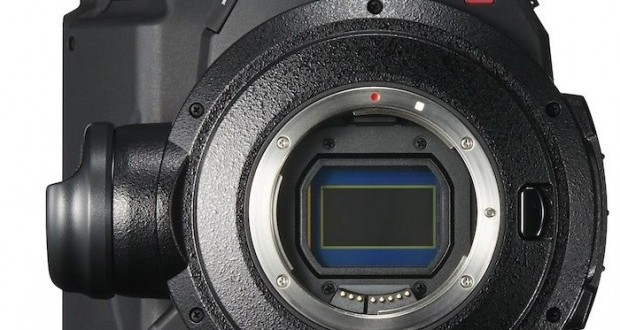 canon-c300-mark-ii-620x728