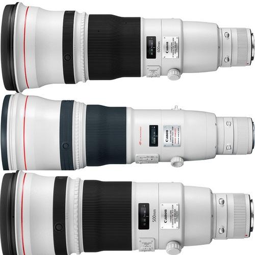 Bird photography lens canon