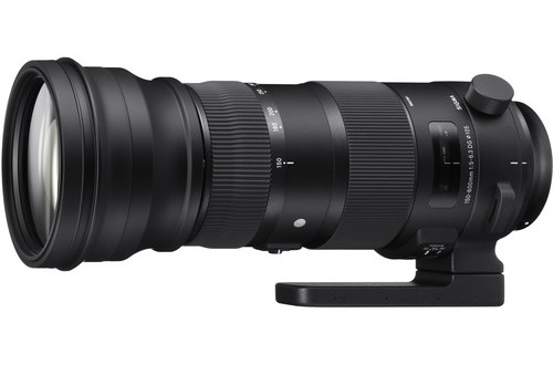Sigma 150-600mm f/5-6.3 DG OS HSM Sports Lens