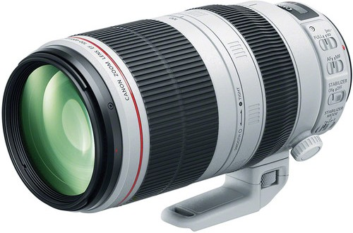 The Current Canon EF 100-400mm f/4.5-5.6L IS II USM Lens
