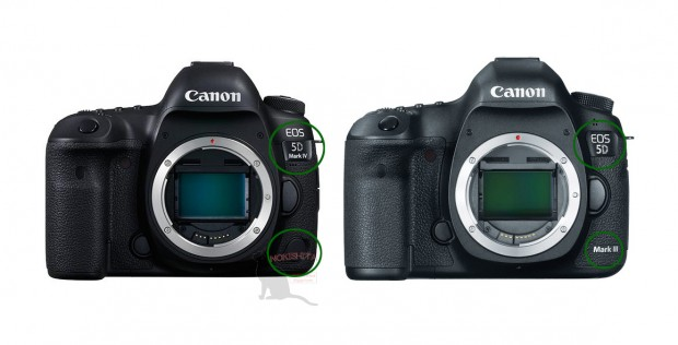 Canon-eos-5d-mark-iv-vs-5d-mark-iii-1-620x316