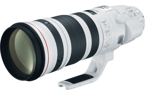 The Current Canon EF 200-400mm f/4L IS USM Lens with Internal 1.4x Extender