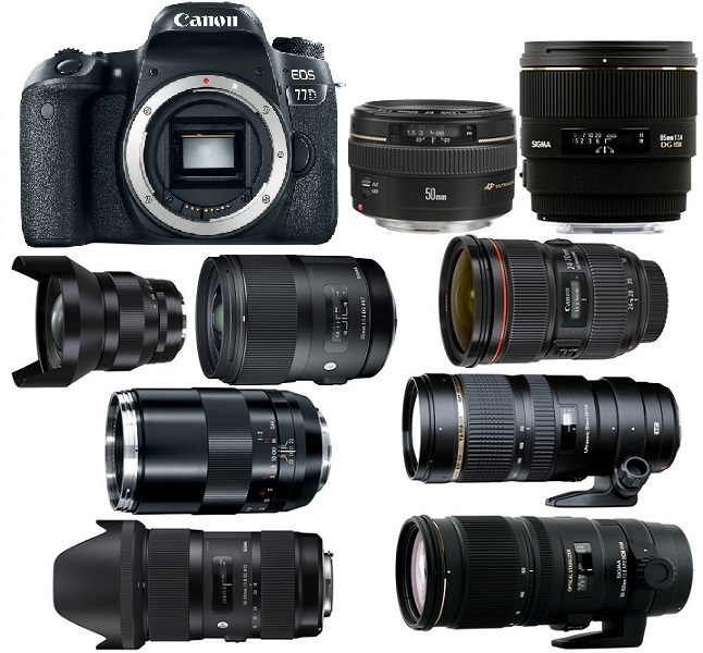 Best Lenses for Canon EOS 77D | Camera Times