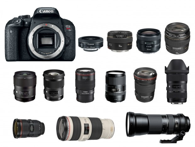 Canon Rebel T7i  Lenses