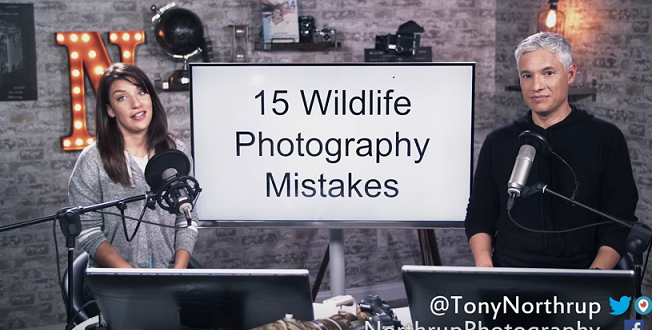 15-Wildlife-Photo-Mistakes