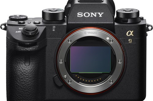Sony-a9-Mirrorless-Camera-2