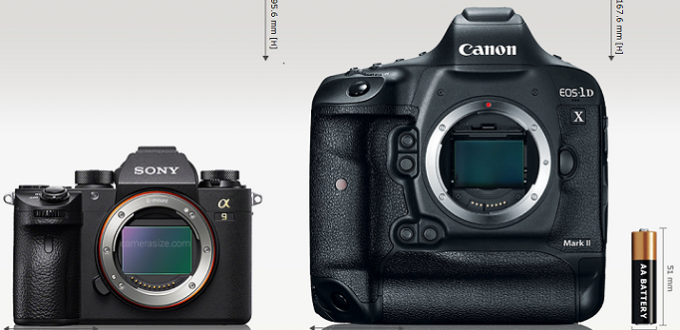 Sony-a9-vs-Canon-EOS-1D-X-Mark-II