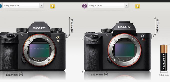 Sony-a9-vs-Sony-a7RII