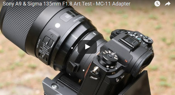 Sony-A9-Test-with-Sigma-135mm-f1.8-Art-and-MC-11-Adapter
