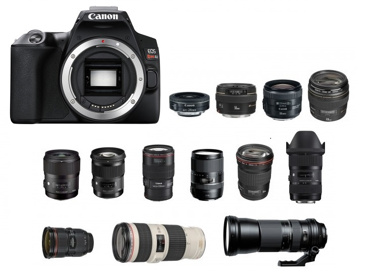 Best Lenses for Canon EOS Rebel SL3 | Camera Times