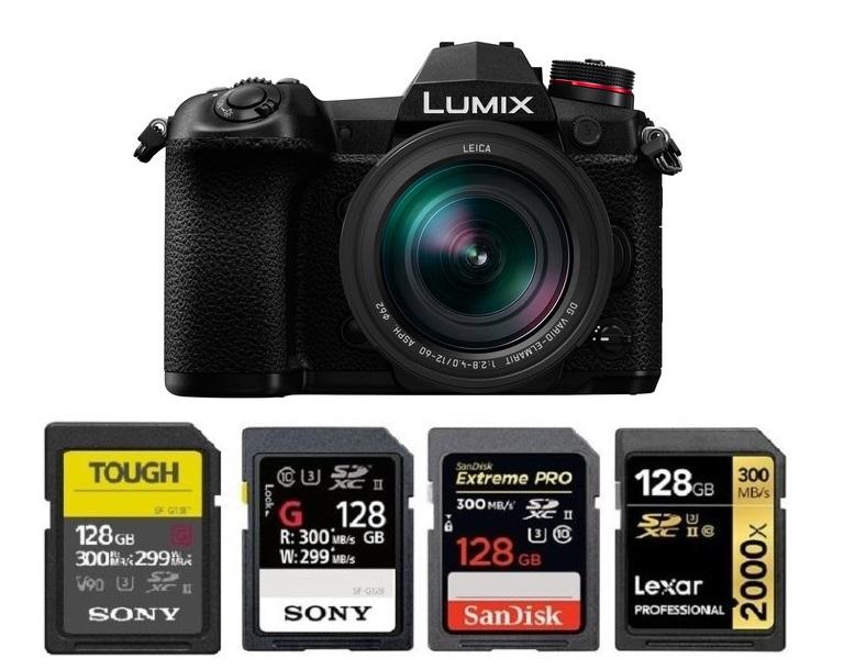 Synergy Digital Camera Memory Card Class 10 Extreme Capacity Memory Card SDXC Works with Panasonic LUMIX DC G9 Digital Camera 256GB Secure Digital