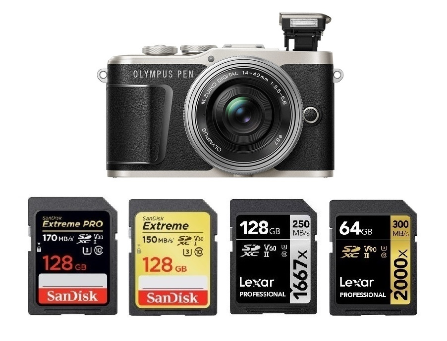 256GB Secure Digital Class 10 Extreme Capacity Memory Card SDXC Works with Olympus PEN E-PL9 Digital Camera Synergy Digital Camera Memory Card